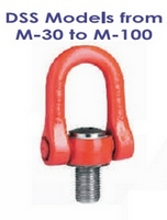 Swivel Eye Bolt